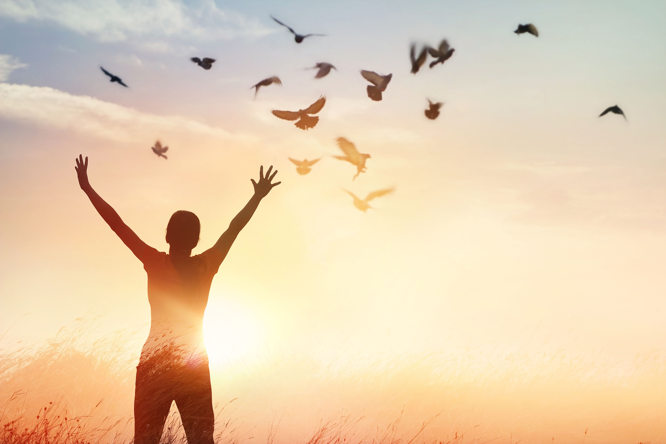 How to Find Happiness and Healing Through Forgiveness